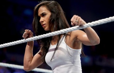 AJ Lee comments on the possibility of Returning to WWE, CM Punk in MMA