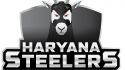 Haryana Steelers build a balanced squad from PKL 7 Auction